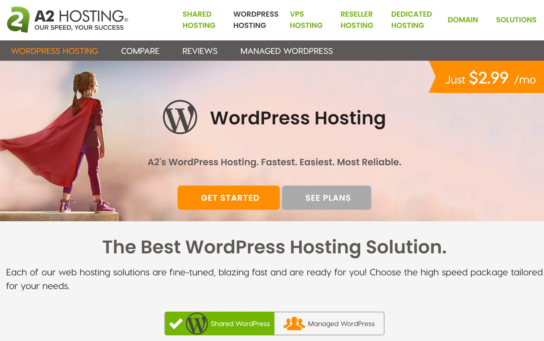 Las mejores 9 opciones de alojamiento de WordPress comparadas (2021) - 1630938223 324 Las mejores 9 opciones de alojamiento de WordPress comparadas 2021